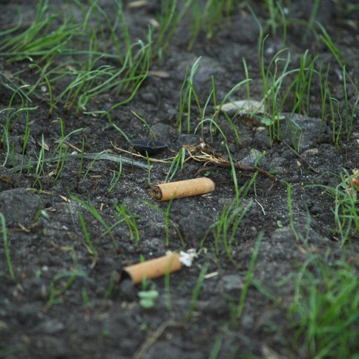 mohali man recycles cigarette butts