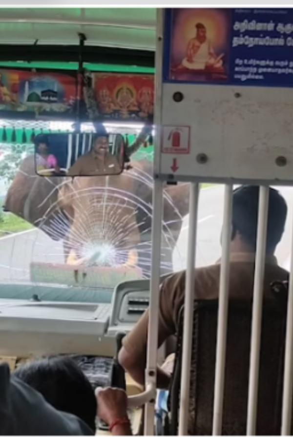 elephant-cracks-windshield