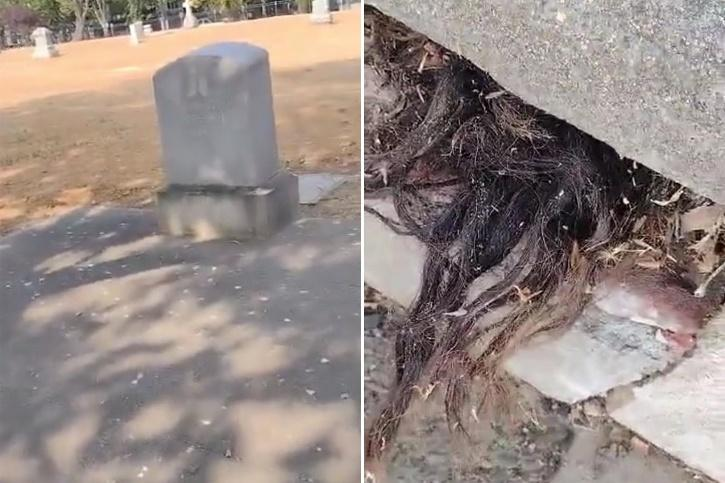 Man discovers hair poking out of 100-year-old grave