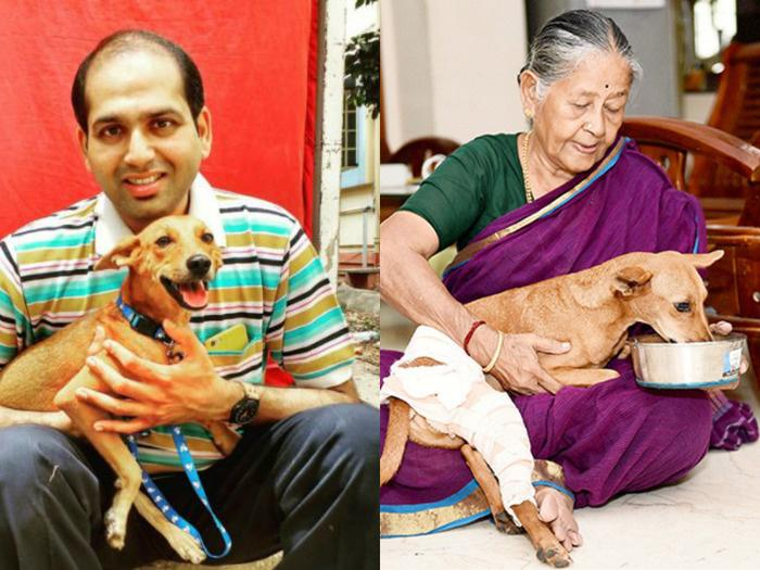 Dog Flung From Rooftop, Bhadra, Finally Gets A Permanent Home