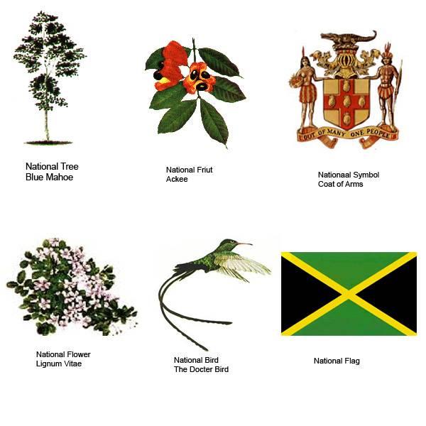 National Symbols Indiatimes