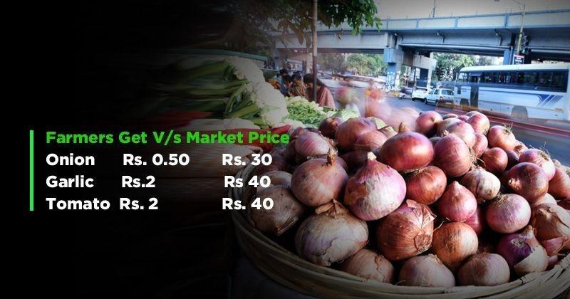 Onion price in usa