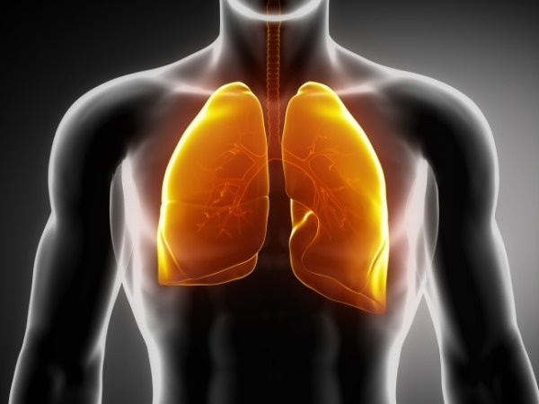 Human Lungs Can Sweep Out Intruders