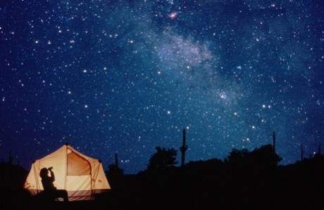 Phoenix galaxy cluster