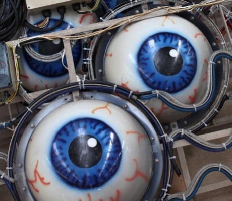 Bionic eye brings amazed woman some sight