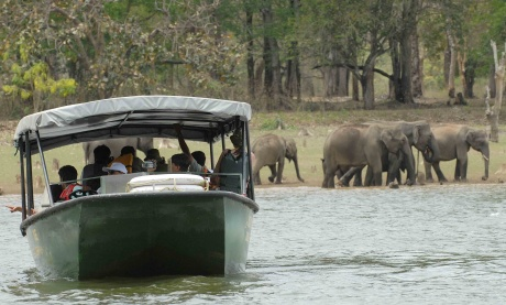 Kabini: Wild, peaceful and all in between