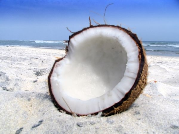 How Coconut Oil Can Help Prevent Tooth Decay