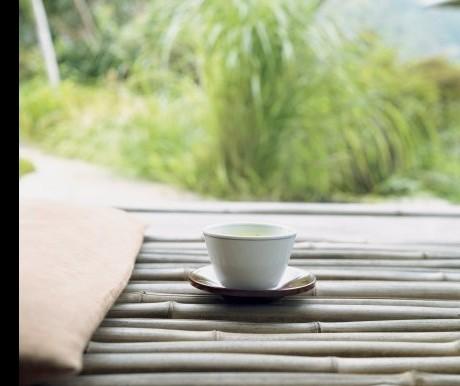 Tea and its benefits