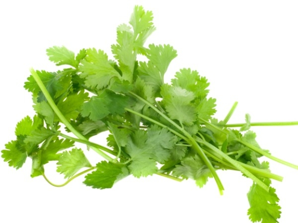 Coriander-Fortified Bread Is Nutritious: Kolkata Research