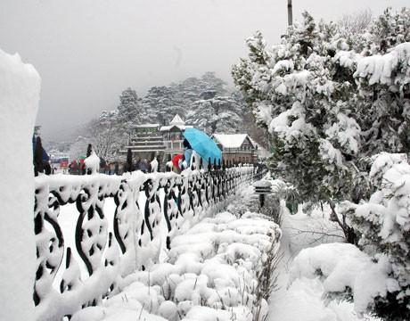 Himachal snow