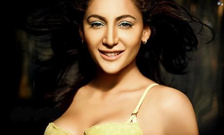 Shillpi Sharma: New hottie in Heroine!