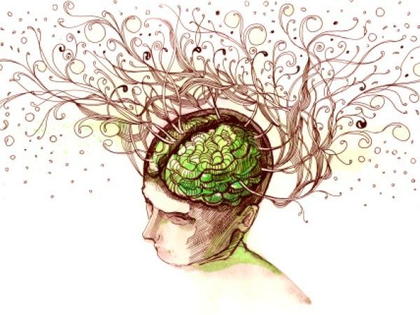 Brain Can Shut Off Old Habits?