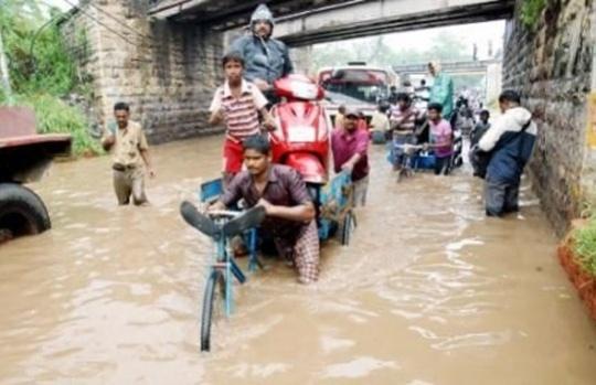 Heavy Rain Disrupts Normal Life in Odisha