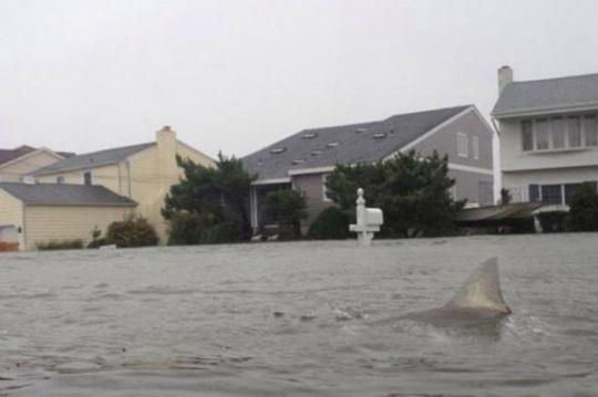 Hurricane Sandy 'floods' Twitter