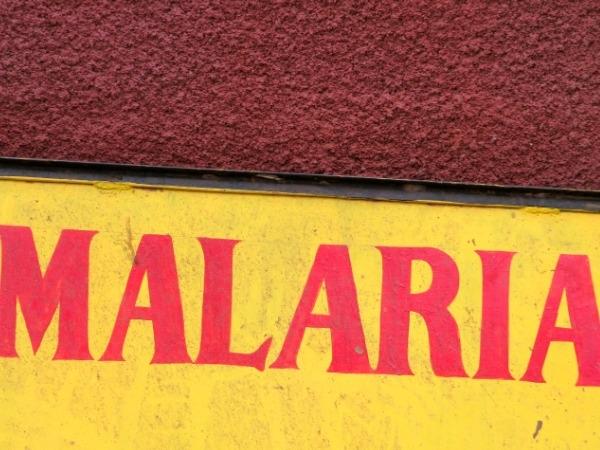 Old Drug Found Effective Against Malaria