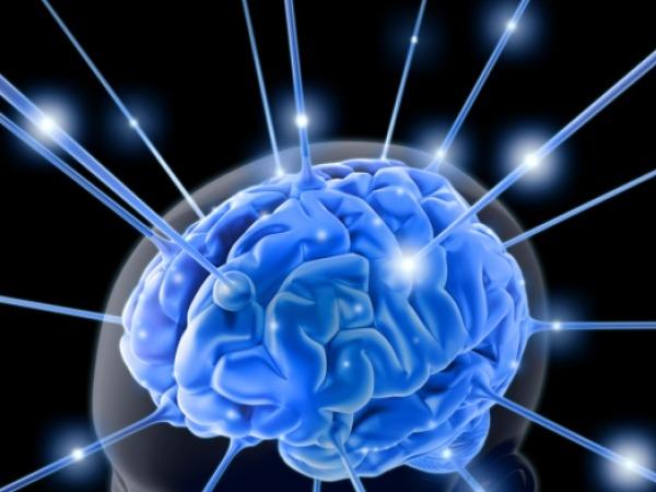 Omega-3 Boosts Working Memory