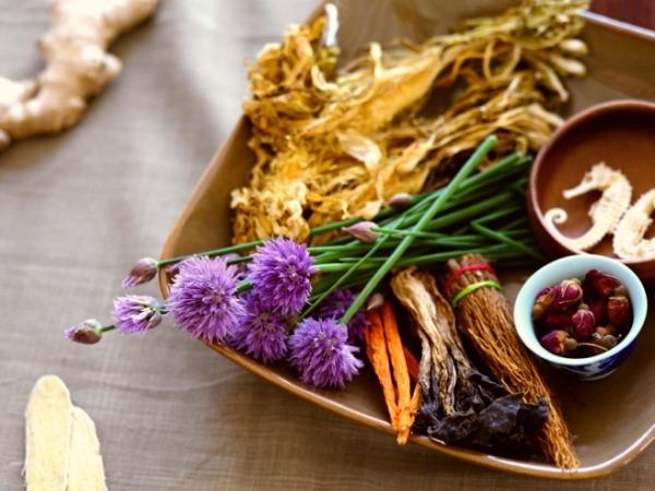 10 Herbs To Battle Diabetes