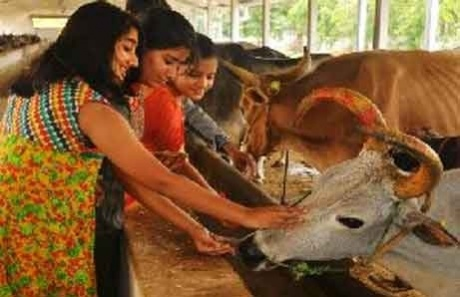 Cow's milk protects against HIV