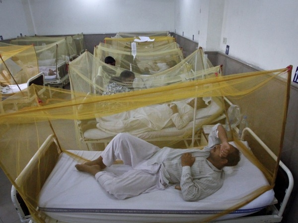 Over 1,200 Now Down With Dengue In Bengal