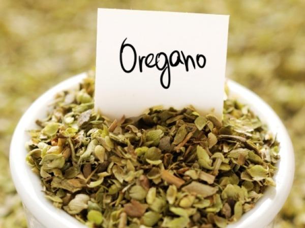 Food Basics: Health Benefits Of Oregano