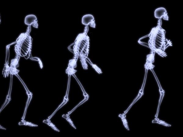Bone Health: How To Prevent Bone Loss