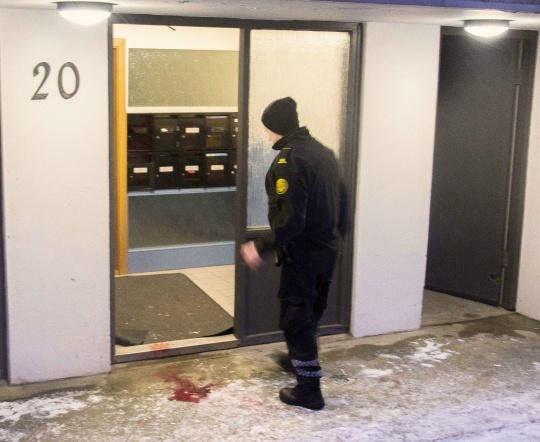 Iceland's First-Ever Police Shooting Leaves One Dead