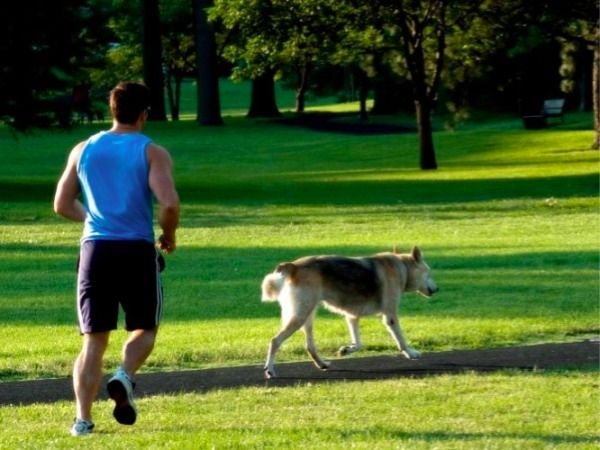 Why You Should Workout With Your Pet