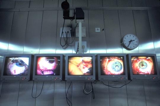 Genes Behind Short-Sightedness Identified