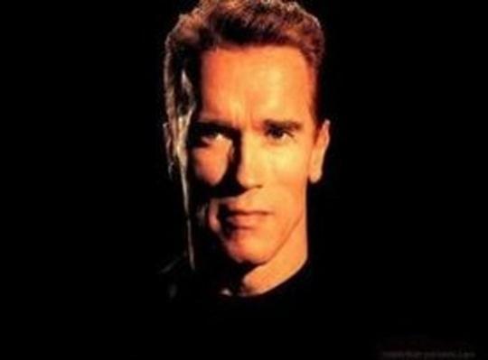 Arnold Schwarzenegger sex photo: Porn site offers