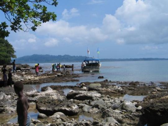 8.0 Quake Strikes Solomons, Sparks Pacific Tsunami