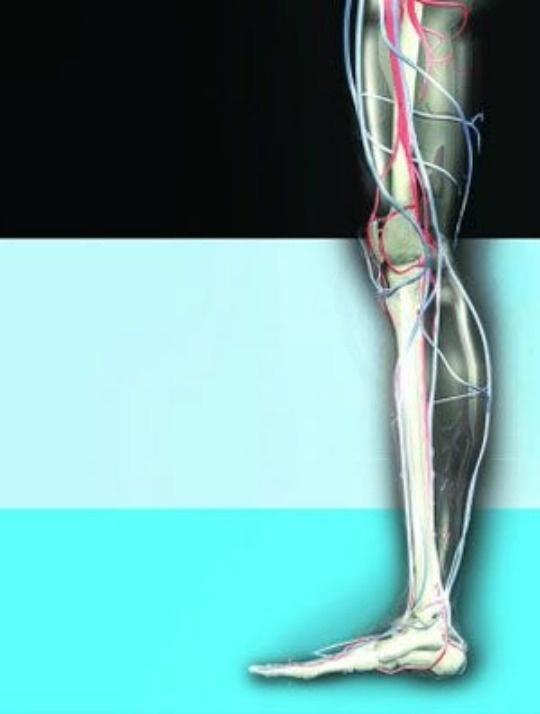 Stem Cell Implants can Fix Broken Bones