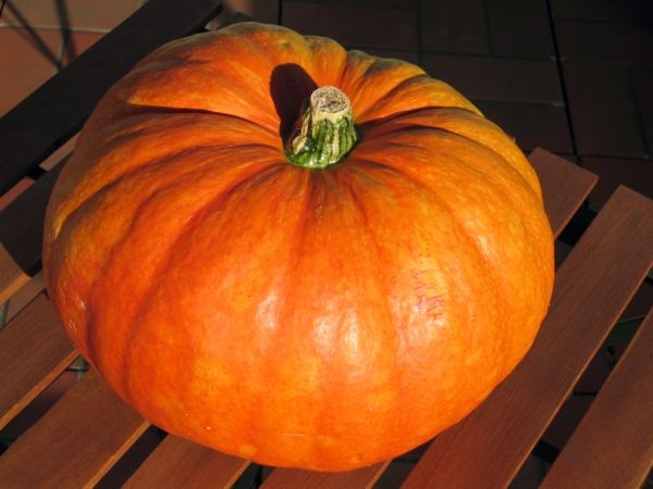 Vegan Recipes: Red Pumpkin with Coconut