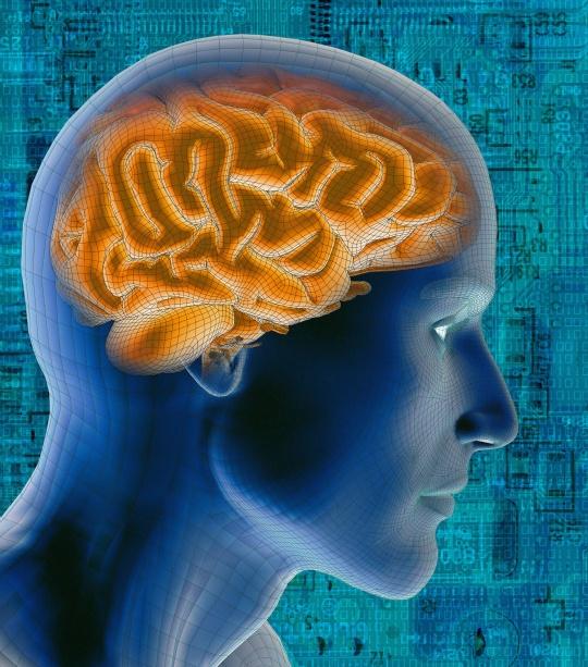 Oxygen Reverses Brain Damage After Stroke