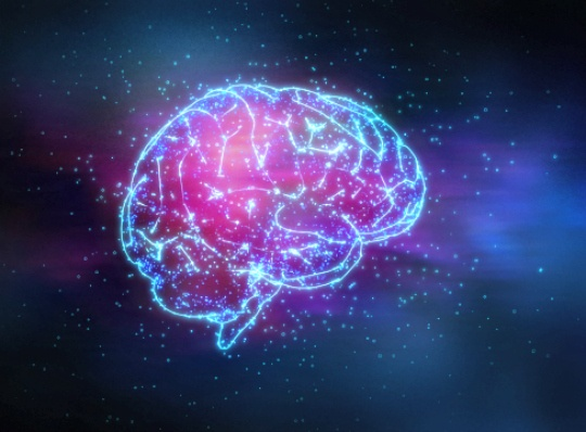 Discovery Shows Flip Flopping of Brain Cells