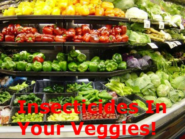 Vox Pop: Buying Vegetables During Monsoons. How Do You Choose ?