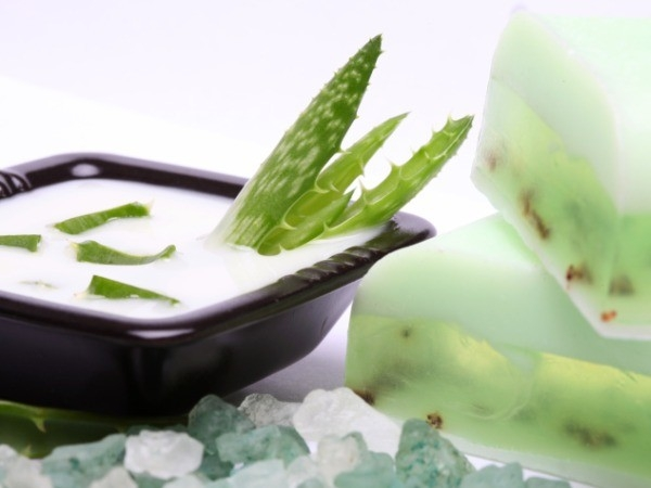 Health Benefits: Why Aloe Vera is Great for You