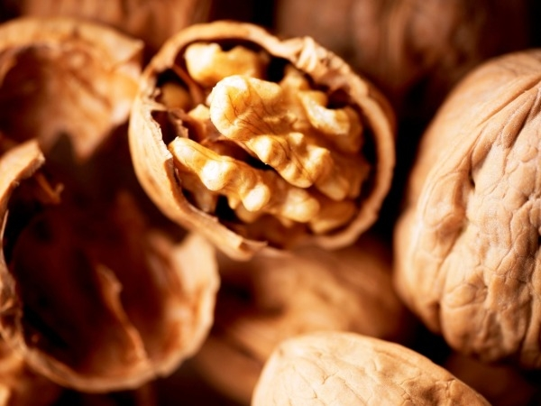 Study Shows Walnuts May Protect Against Cancer