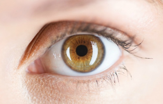 Virus Can Carry Genes to Restore Sight