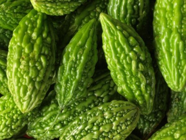 Weight Loss Foods: Karela (Bitter Gourd)