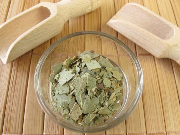 Food Basics: Health Benefits Of Eucalyptus Oil