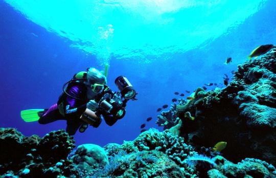 10 Underwater Heavens for Scuba Diving