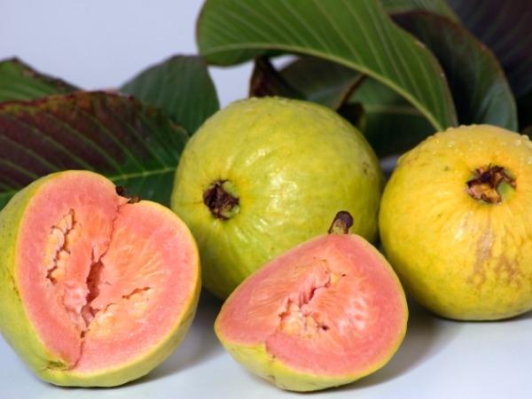 Healthy Foods: Top 11 Health Benefits Of Guava