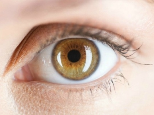 Time Spent On Screens Can Affect Eyesight