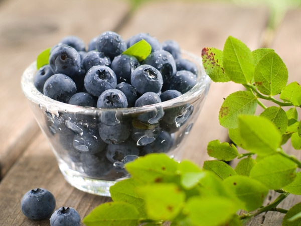 Navratri Special: Health Benefits Of Blue Coloured Foods
