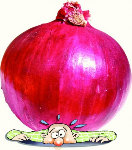 High Price of Onions