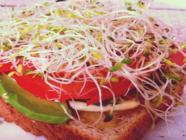 Healthy Snack Recipe: Alfalfa Sprouts Open Sandwich