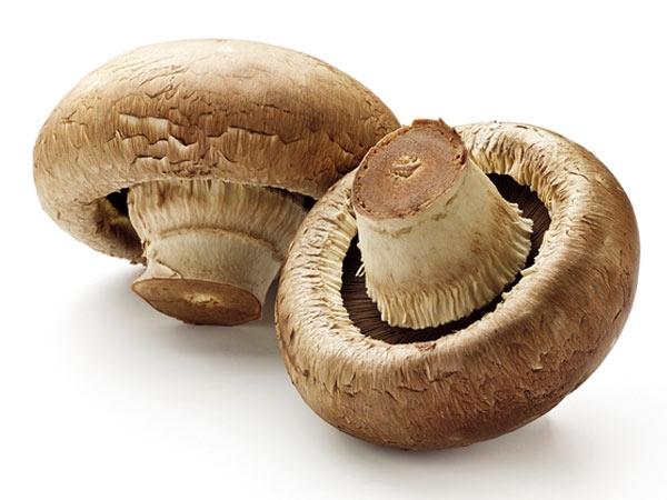 Health Benefits Of Mushrooms