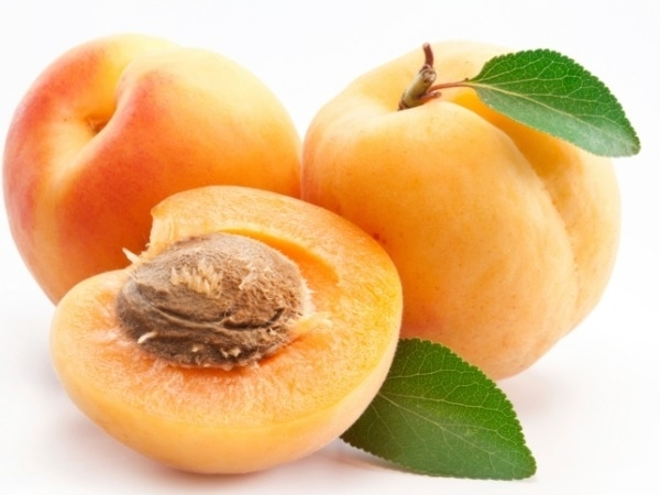 Healthy Foods: Health Benefits Of Using The Apricot Kernel