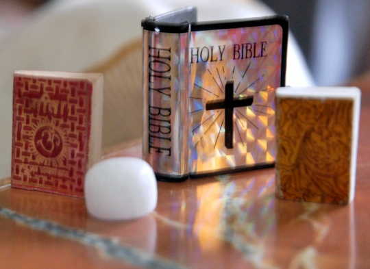 Bible's Camel Records May Not be True: Study