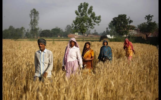 Modi's Steps To Check Rising Food Prices